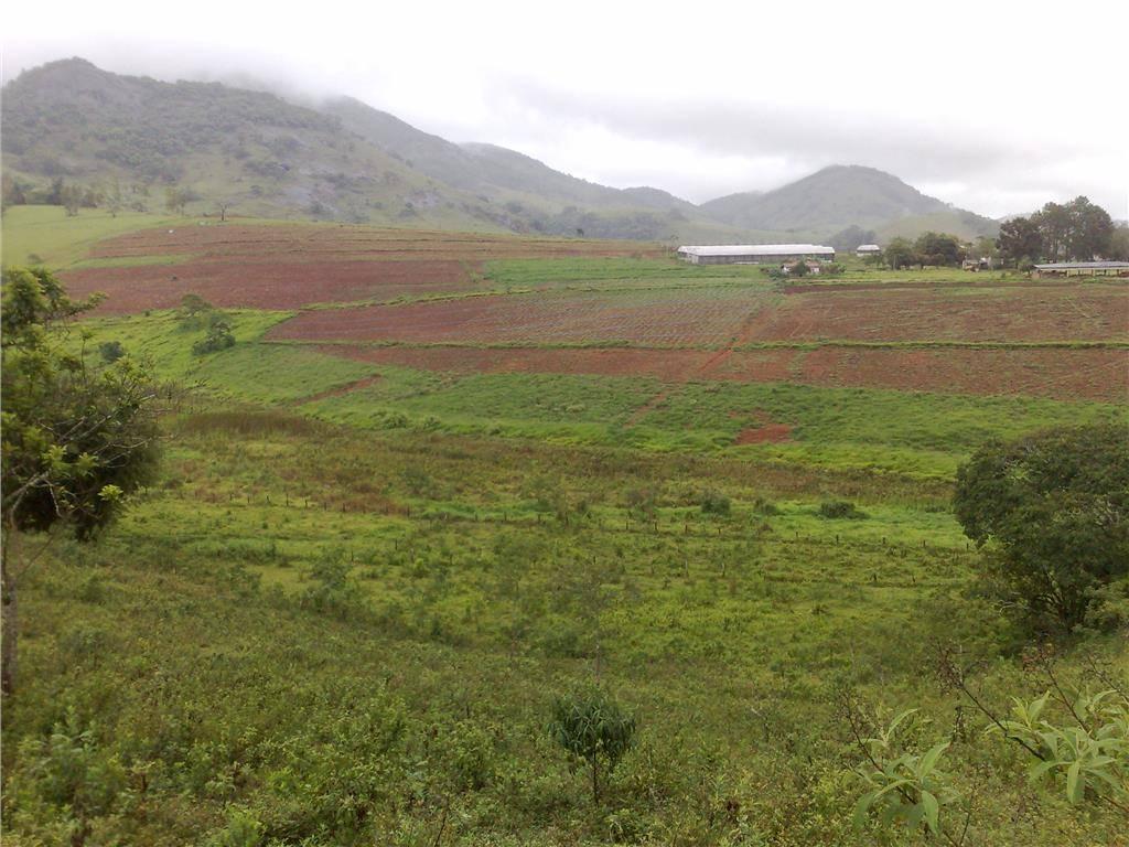 Chácara, Ouros, Paraísopolis (CH0051) - Foto 3