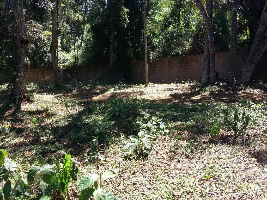 Terreno Residencial à venda em Vargem Grande, Teresópolis - Foto 7