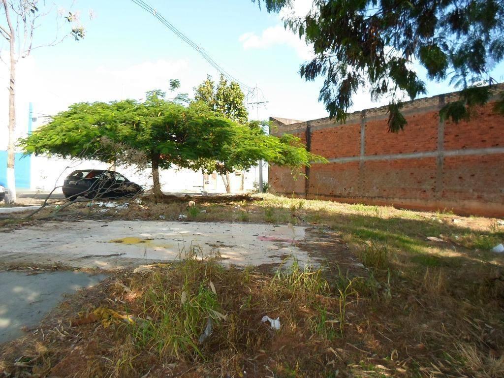 Terreno para alugar no Ipanema em Araçatuba/SP