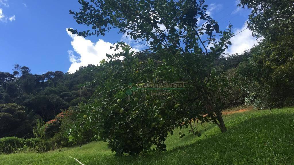 Casa à venda em Fazenda Boa Fé, Teresópolis - RJ - Foto 32