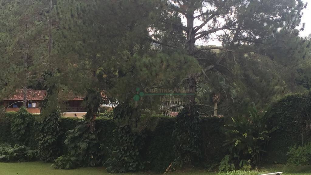 Casa à venda em Fazenda Boa Fé, Teresópolis - RJ - Foto 13