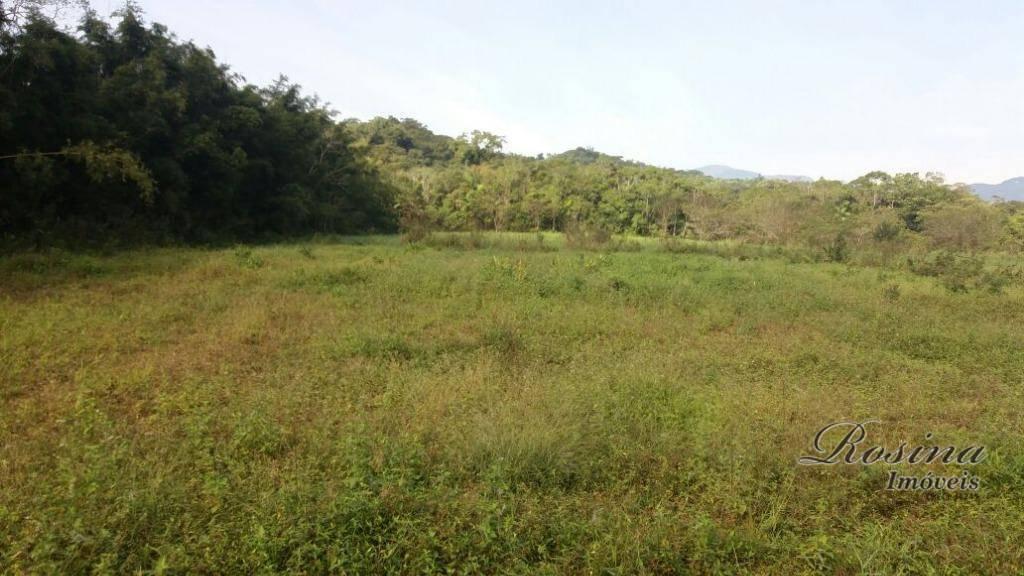 linda área rural com aproximadamente 10.000 m² localizada na ponte alta em morretes/pr.esse terreno fica apenas...