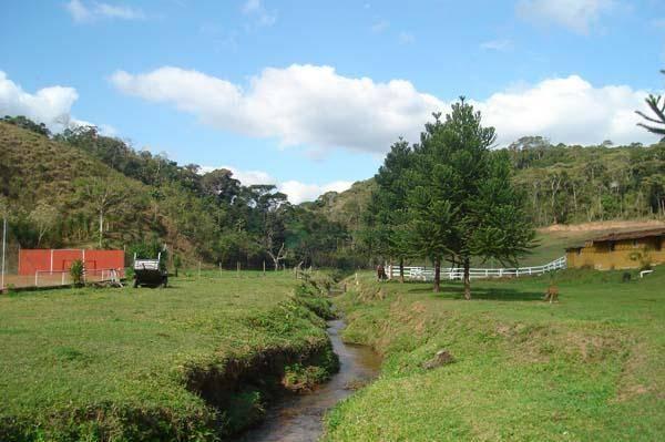 Fazenda / Sítio à venda em Colônia Alpina, Teresópolis - Foto 9