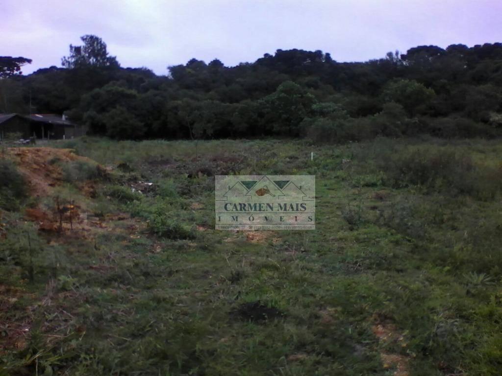Chácara rural à venda, Campina Do Taquaral, São José dos Pin