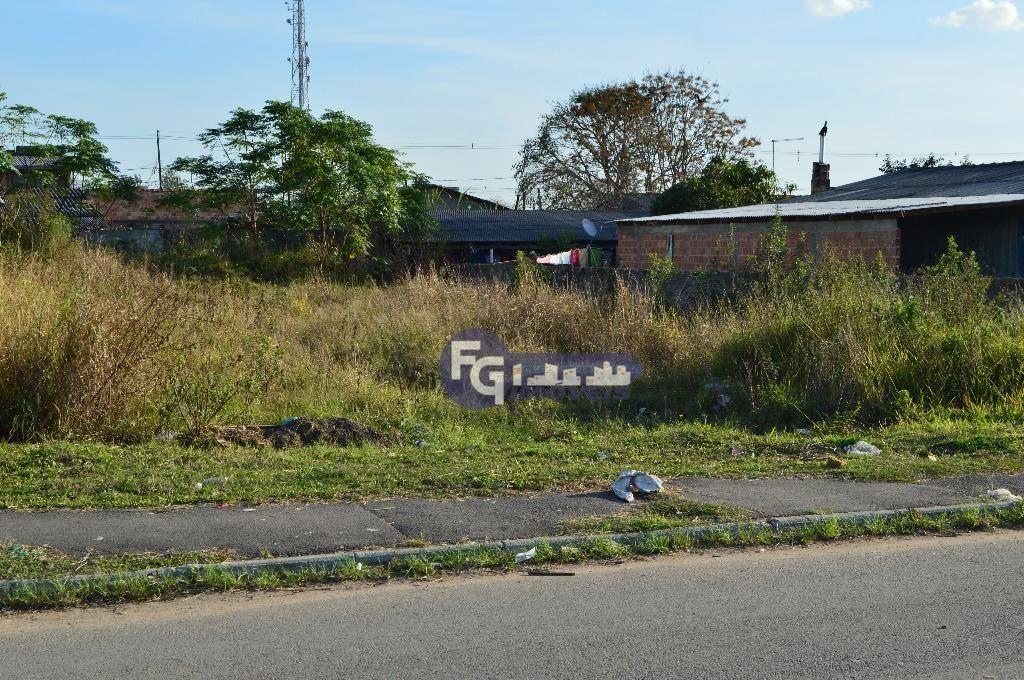 Terreno em São José dos Pinhais