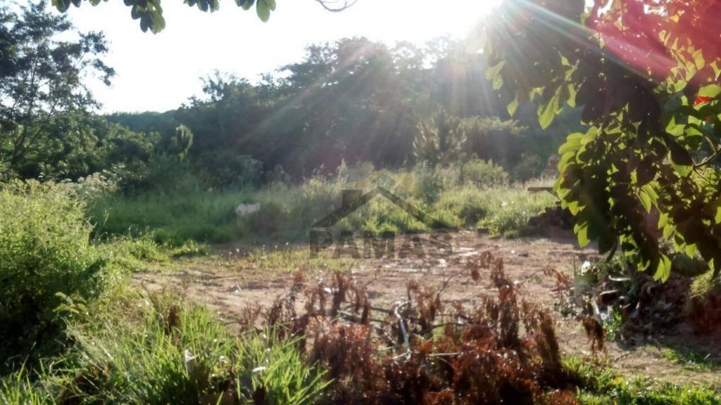 Terreno Residencial à venda, Condomínio Bosque das Araras, Vinhedo - TE0098.
