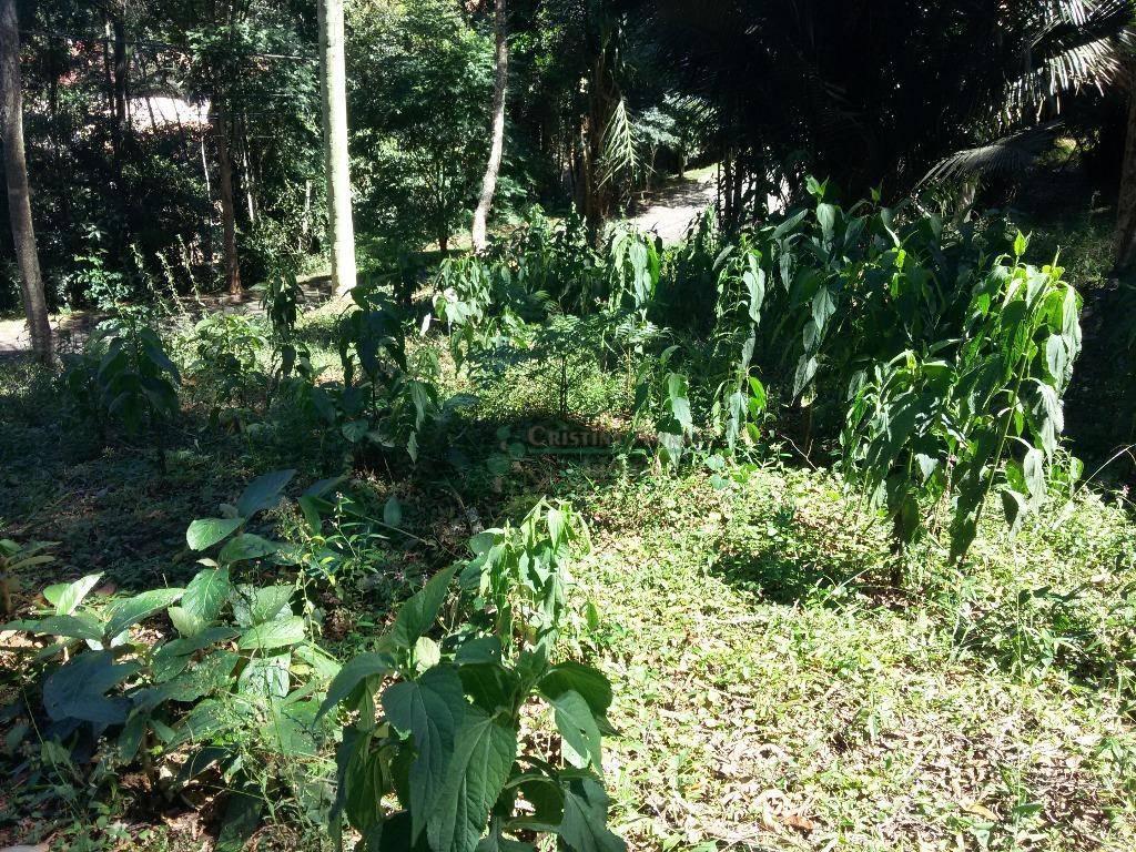 Terreno Residencial à venda em Vargem Grande, Teresópolis - Foto 5