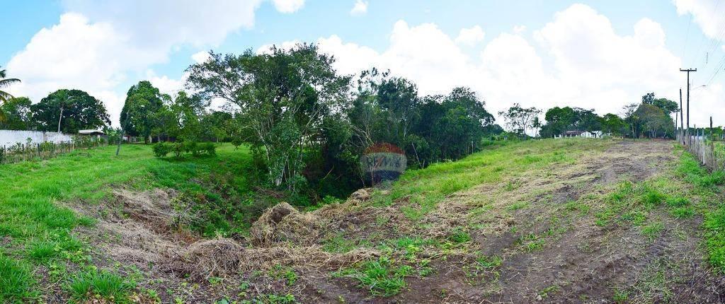 chácara, com 30.000 m², nascente de rio 2 casas e reflorestamento