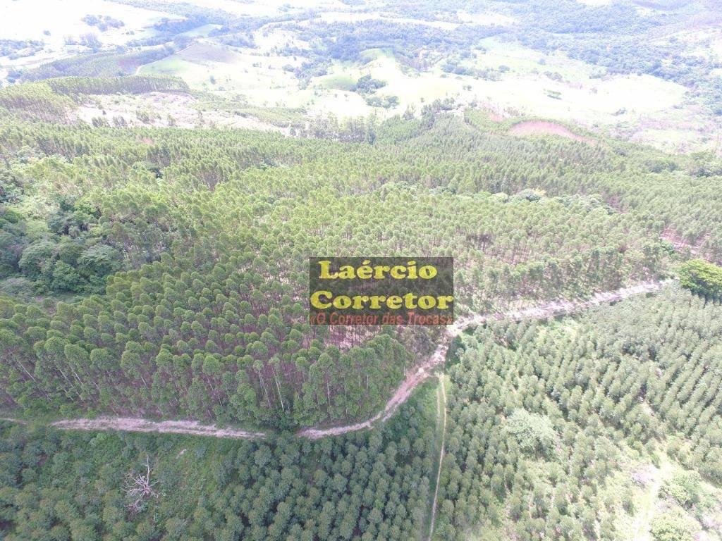 Sítio com 22 Alqueire ou 532400 m² por R$ 1.850.000 - Jardim Primavera - Amparo/SP
