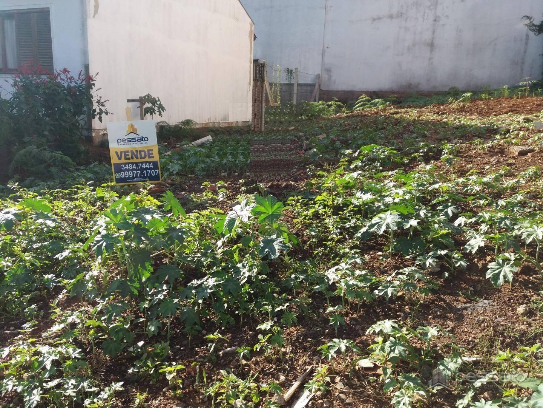 terreno 0 dormitórios em Gravataí, no bairro Loteamento Jardim Timbaúva