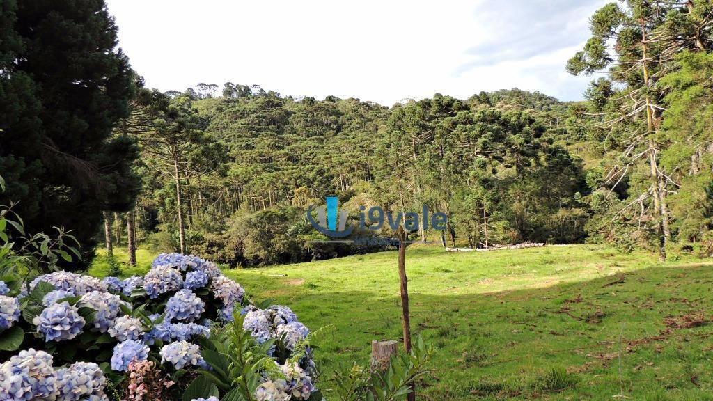 Chácara à venda em Terra Fria, Gonçalves - MG