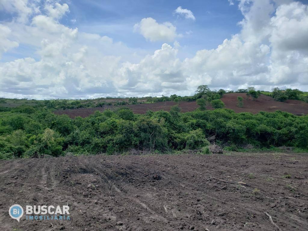 Área à venda, 136342 m² por R$ 240.000,00 - Rural - Coração de Maria/BA