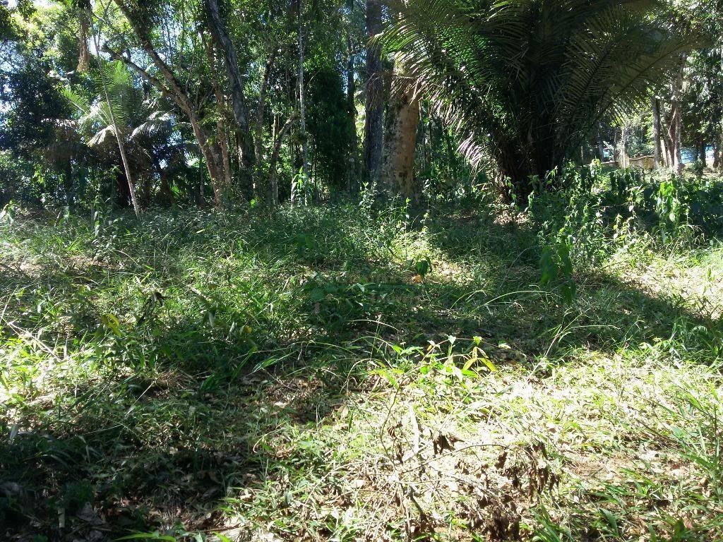 Terreno Residencial à venda em Vargem Grande, Teresópolis - Foto 14