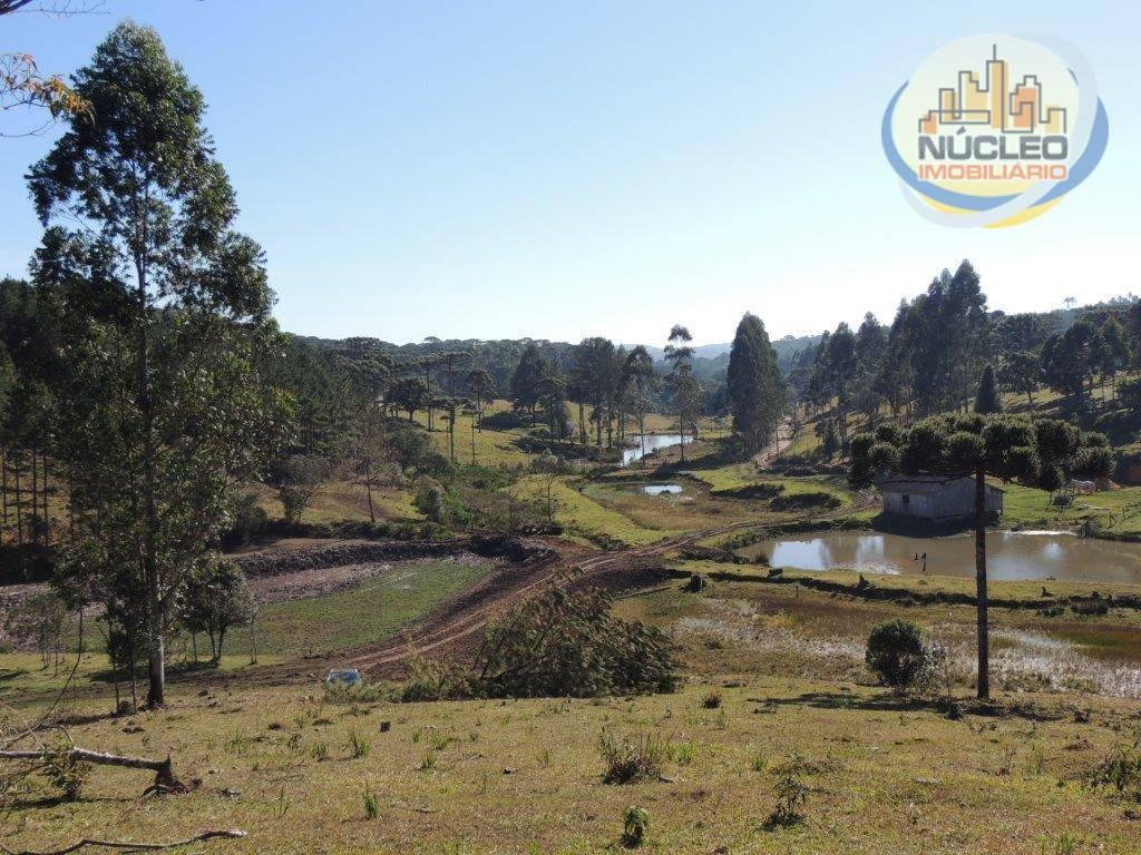 Terreno/Lote à venda, 242.075 m² por R$ 450.000,00