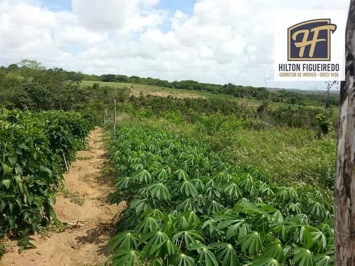 Excelente Chácara com 11 Hectares  à venda, para Agricultura e Piscicultura, No município do Conde/PB
