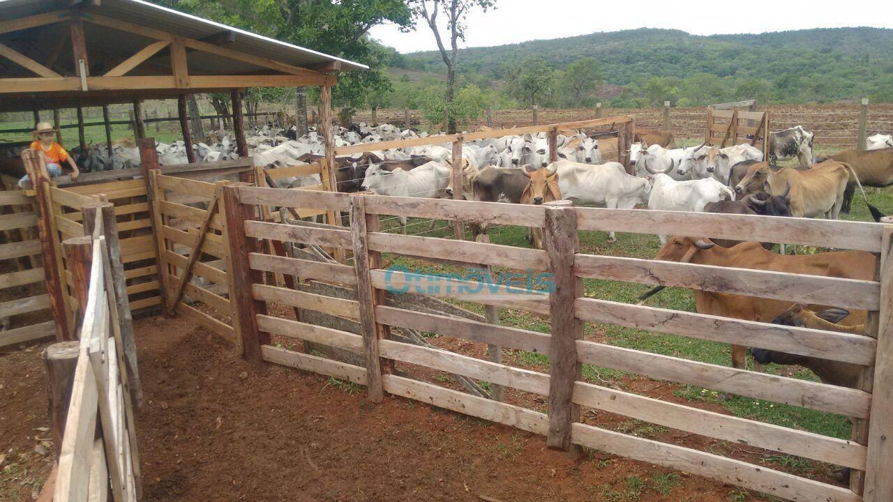 Fazenda 1 quarto(s) para  em /ALTO GARCA