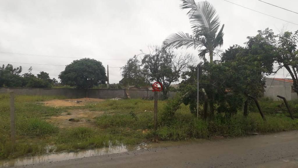 Terreno à venda, 300 m² por R$ 96.000 - Barra do Itapocú - Araquari/SC