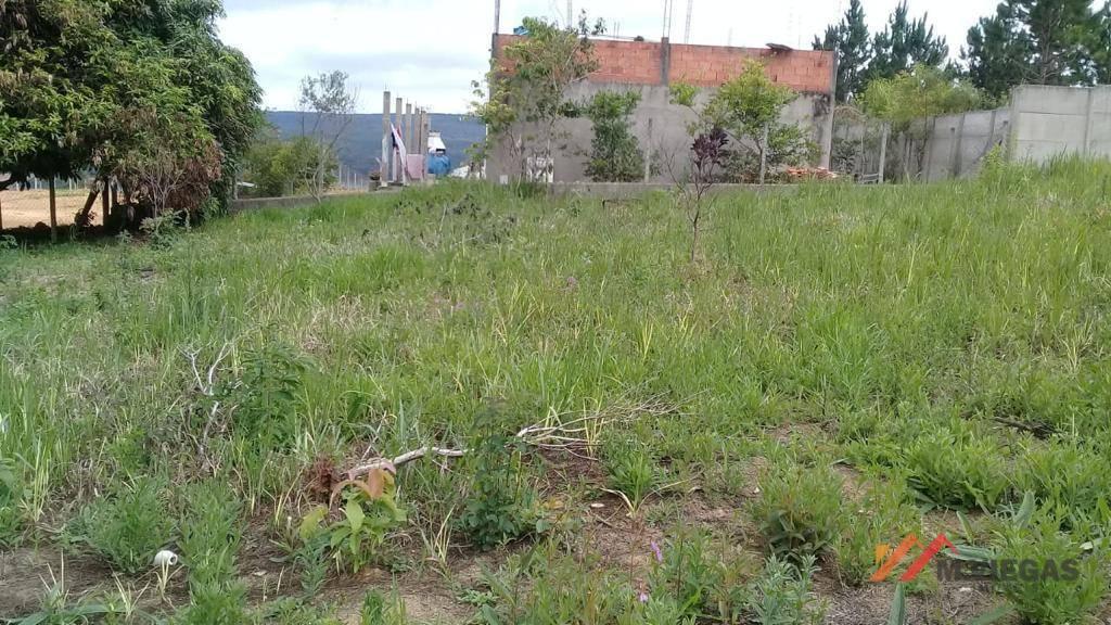 Terreno 0 quarto(s) para  em Piratuba/IBIUNA