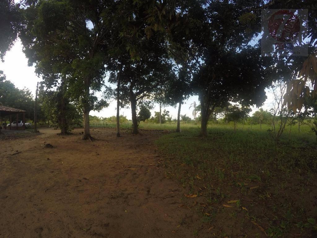 Chácara rural à venda, Povoado, Alhandra.