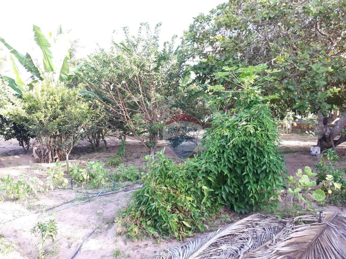 Chácara à venda, 800 m² por R$ 55.000,00 - Areia Branca - São José de Mipibu/RN