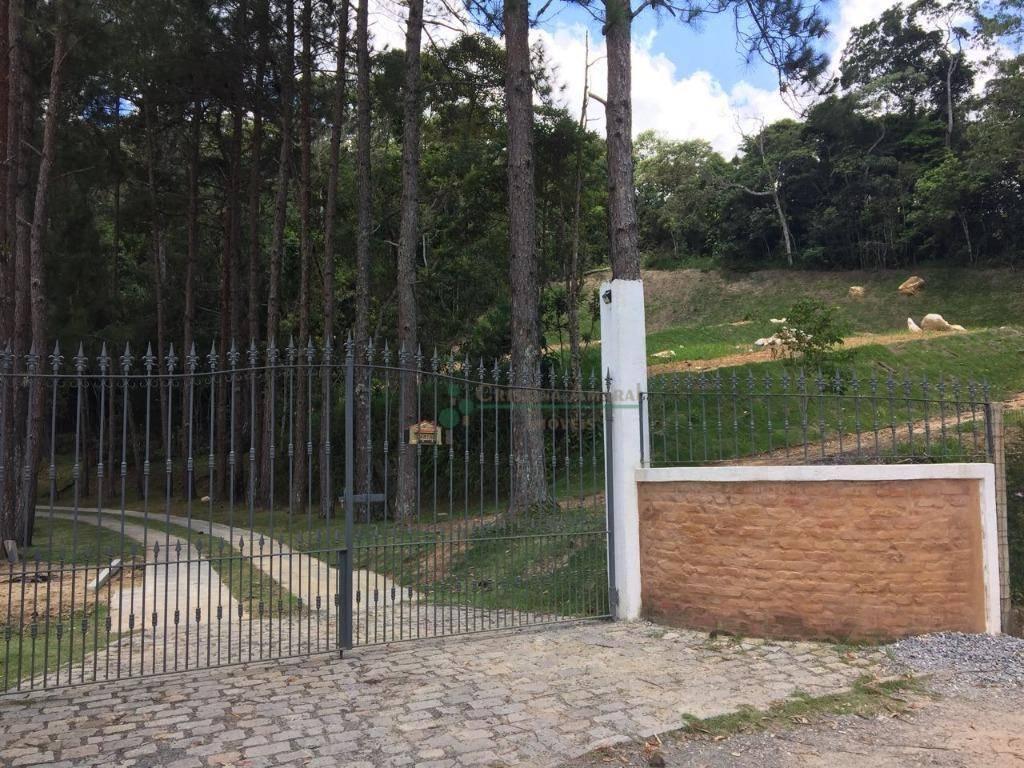Fazenda / Sítio à venda em Vargem Grande, Teresópolis - Foto 10