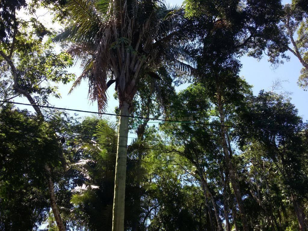Terreno Residencial à venda em Vargem Grande, Teresópolis - Foto 3
