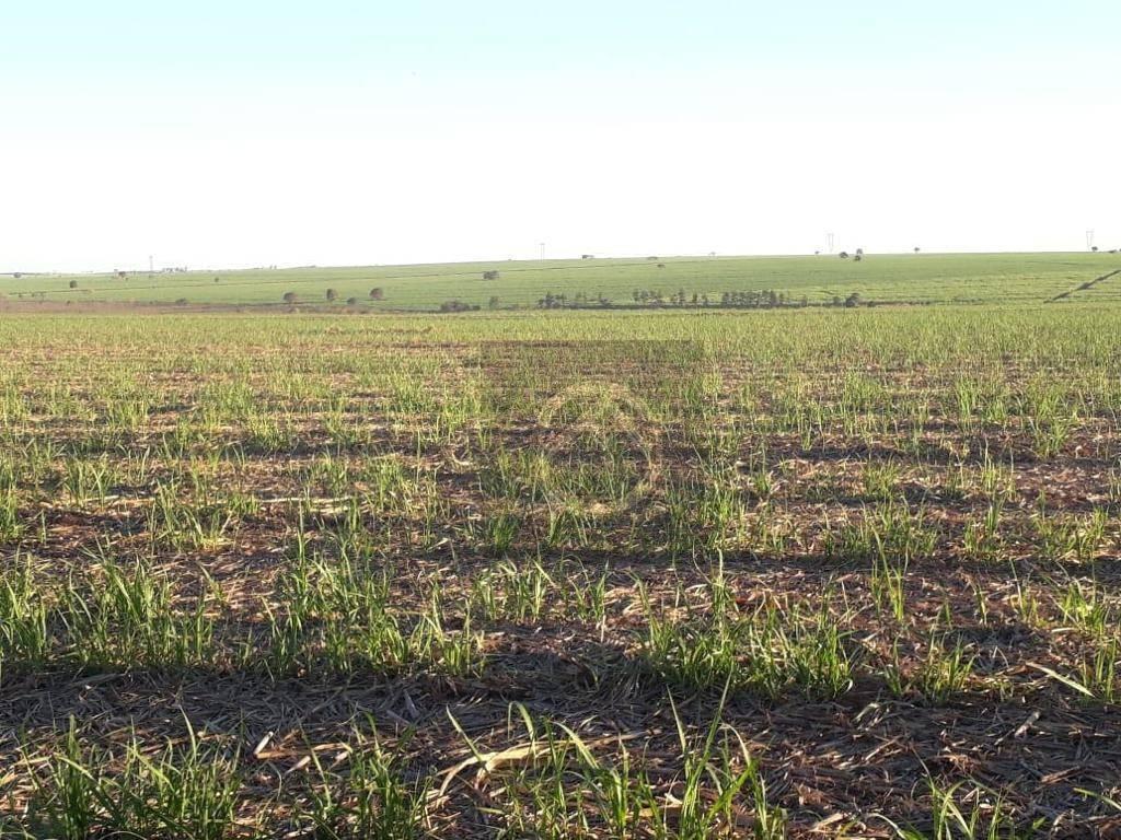 Fazenda 0 quarto(s) para  em Zona Rural/VENTANIA