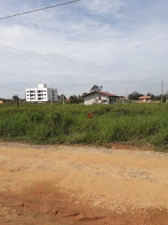 Terreno à venda, 306 m² por R$ 68.000 - Itajubá II - Barra Velha/Santa Catarina