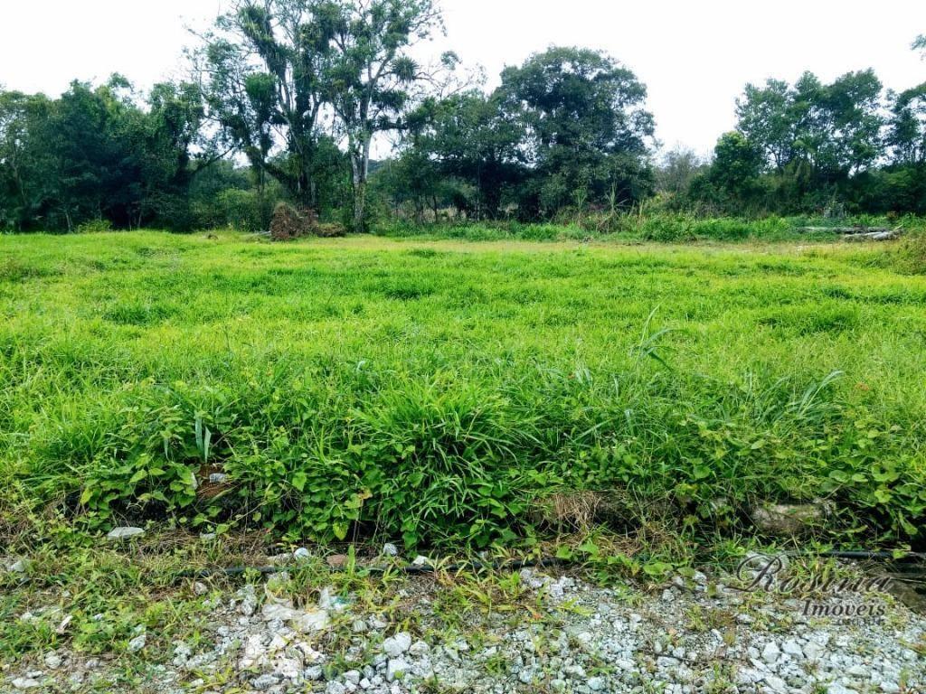 Òtimo terreno próximo ao Centro - Morretes/Paraná
