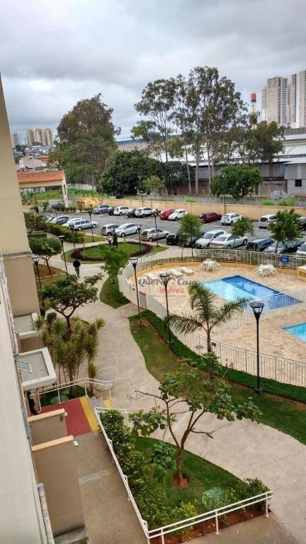 Apartamento residencial para venda e locação, Vila Venditti,
