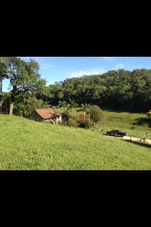 Área rural à venda, Santa Cruz, São João do Itaperiú.