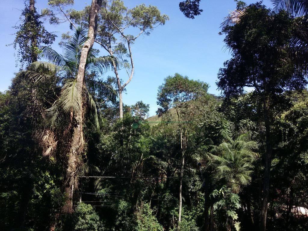 Terreno Residencial à venda em Vargem Grande, Teresópolis - Foto 8