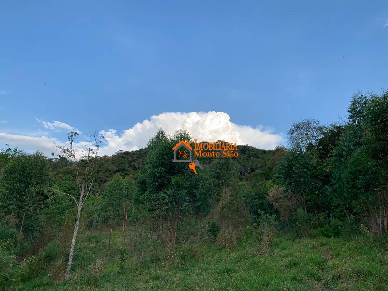 Oportunidade Abaixo do Preço Área à venda, 117000 m² por R$ 318.000 - Vicente Nunes - Nazaré Paulista/SP