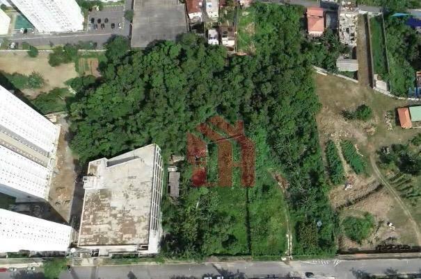 Terreno de 6793,95m2 no Morro da Nova Cintra em Santos