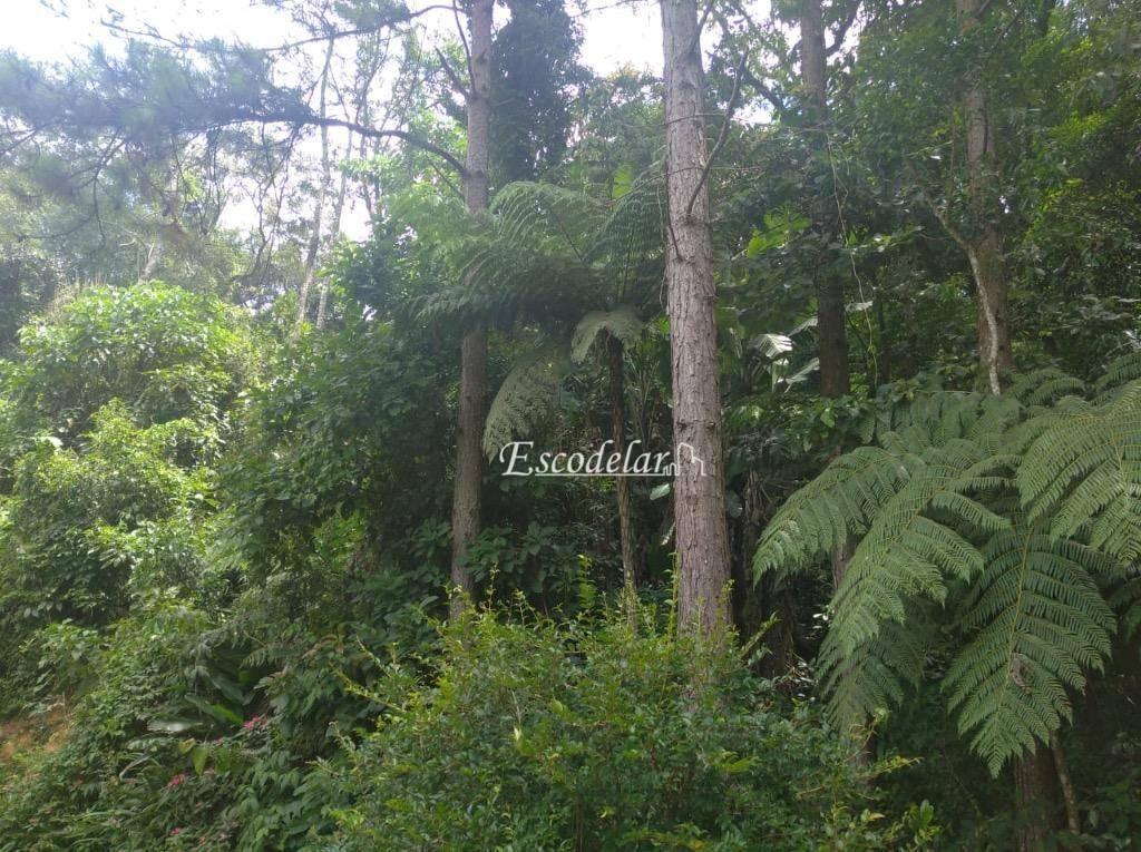 Terreno à venda, 5037 m² por R$ 140.000,00 - Loteamento Cerros Verdes - Mairiporã/SP