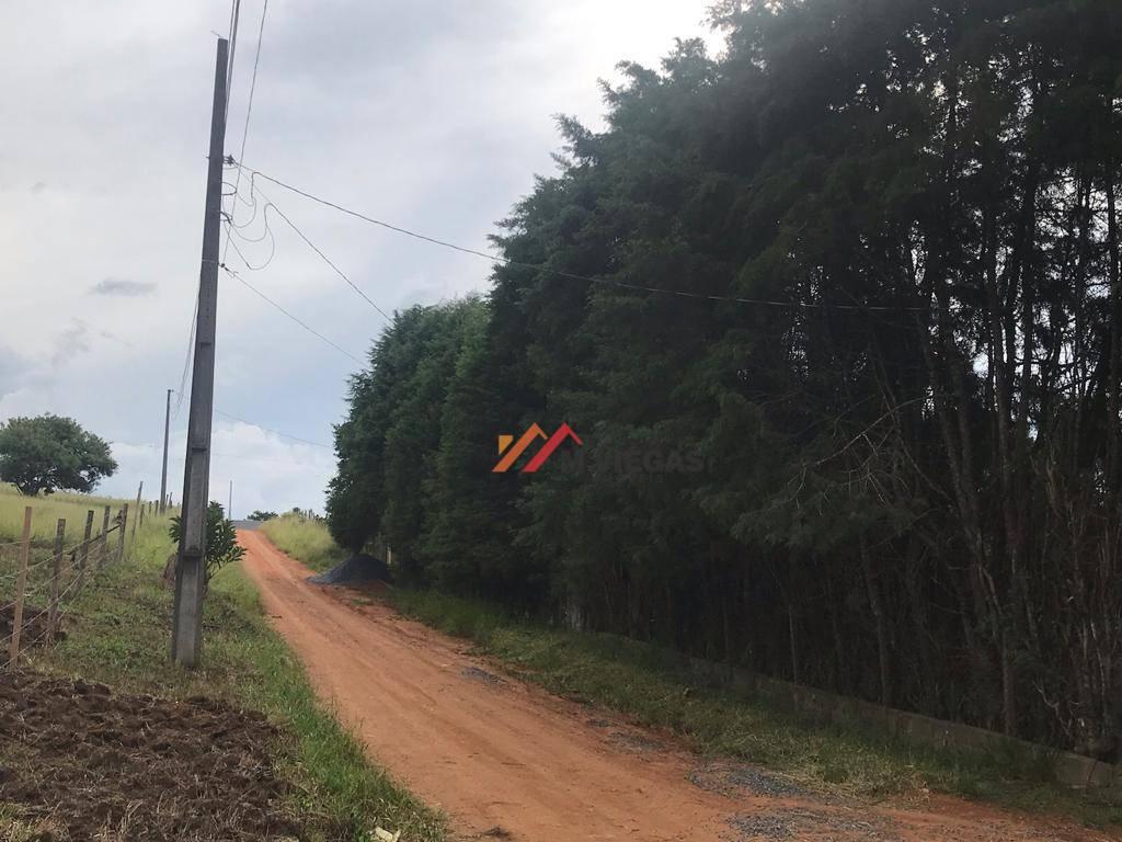 Terreno 0 quarto(s) para  em Bosque de Ibiúna/IBIUNA