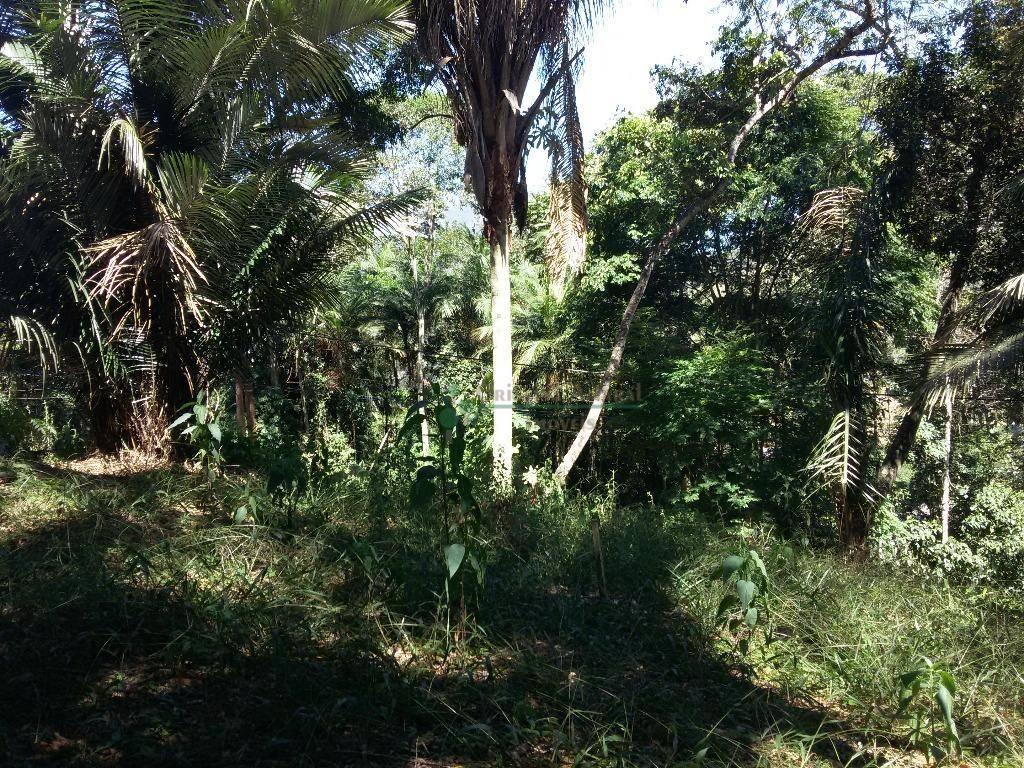 Terreno Residencial à venda em Vargem Grande, Teresópolis - Foto 11