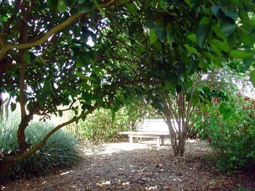 Casa 3 Dorm, Residencial Parque Rio das Pedras, Campinas (CA0073) - Foto 13