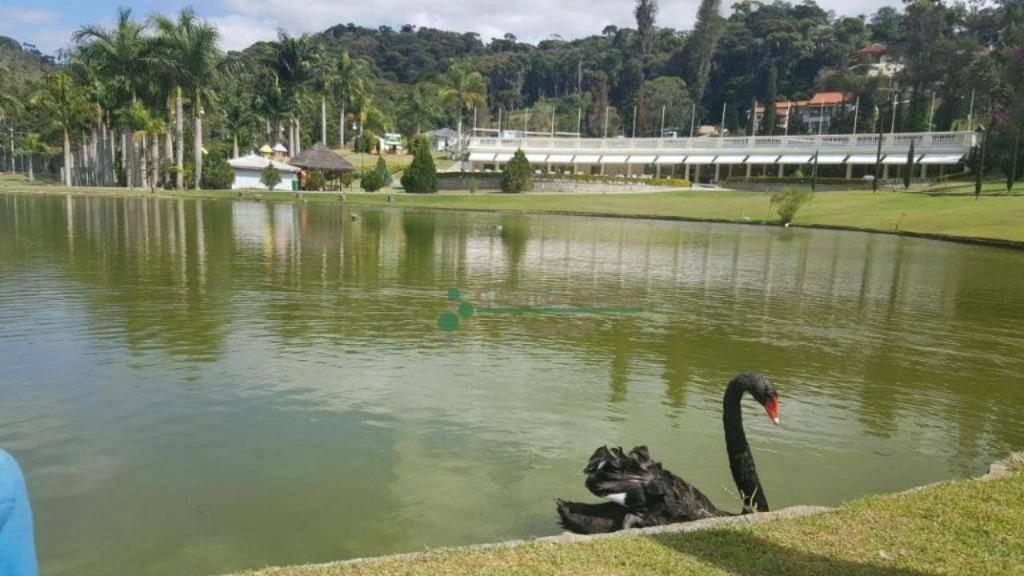 Terreno Residencial à venda em Vargem Grande, Teresópolis - Foto 22
