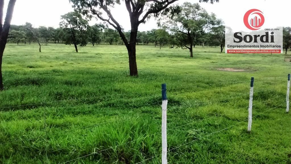 Sítio rural à venda, Centro, São Simão.