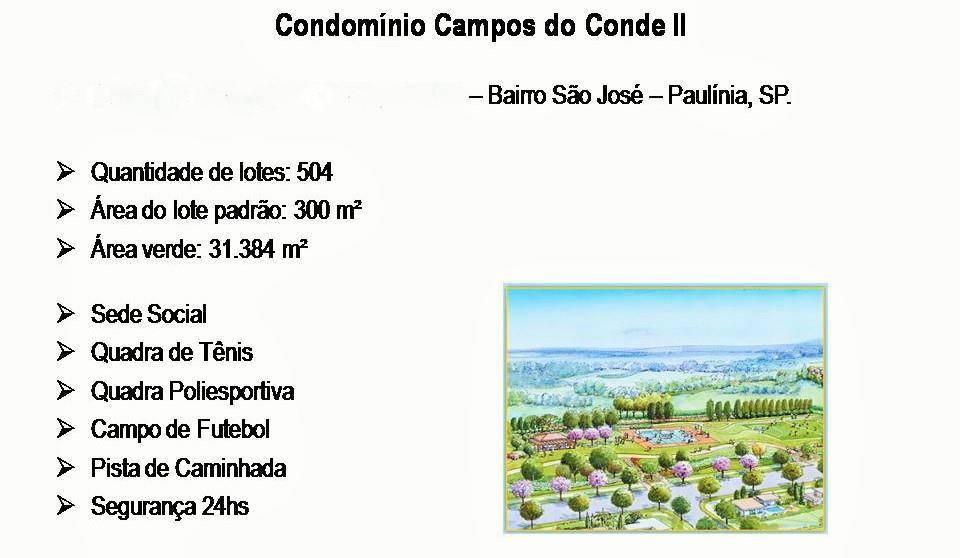 Terreno, Condomínio Campos do Conde Ii, Paulinia (TE0387) - Foto 3