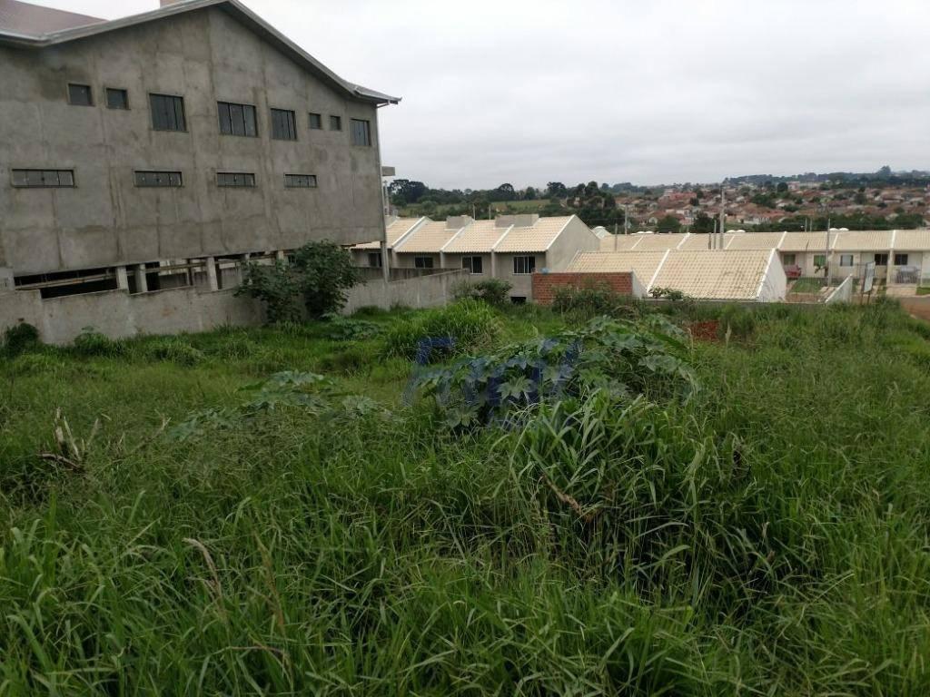 Terreno residencial à venda, Cará-cará, Ponta Grossa.