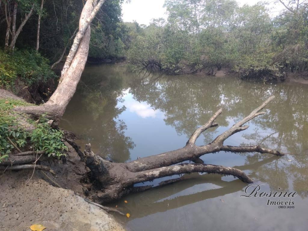 terreno medindo 1 alqueire (24.200,00 metros) com fundos para o rio itaperuçu, todo plano e parcialmente...
