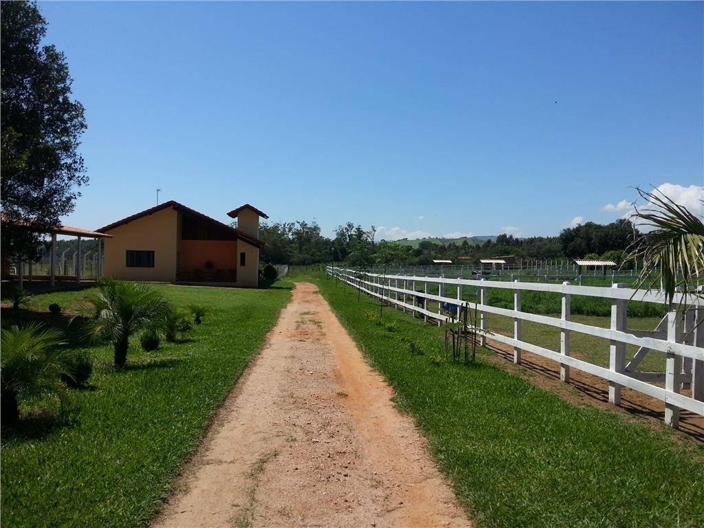 Chácara 3 Dorm, Santa Cruz, Borda da Mata (CH0054) - Foto 6