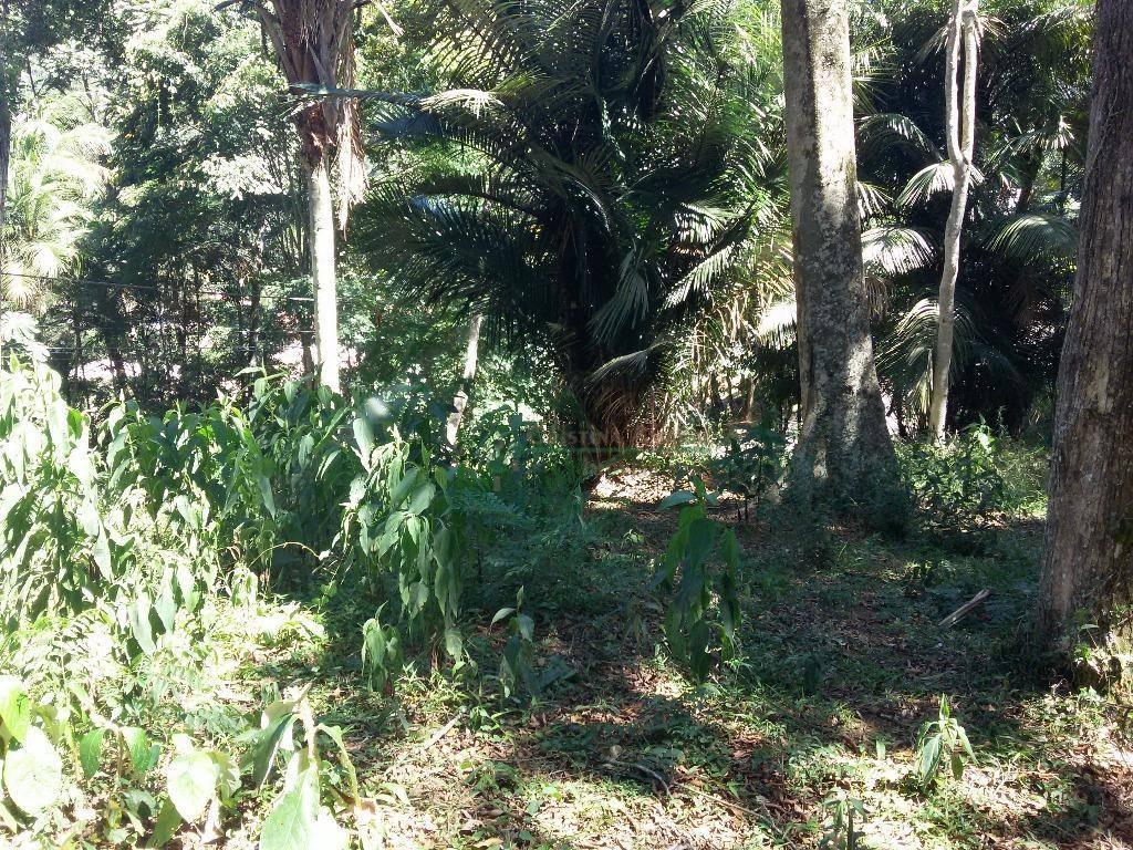 Terreno Residencial à venda em Vargem Grande, Teresópolis - Foto 4