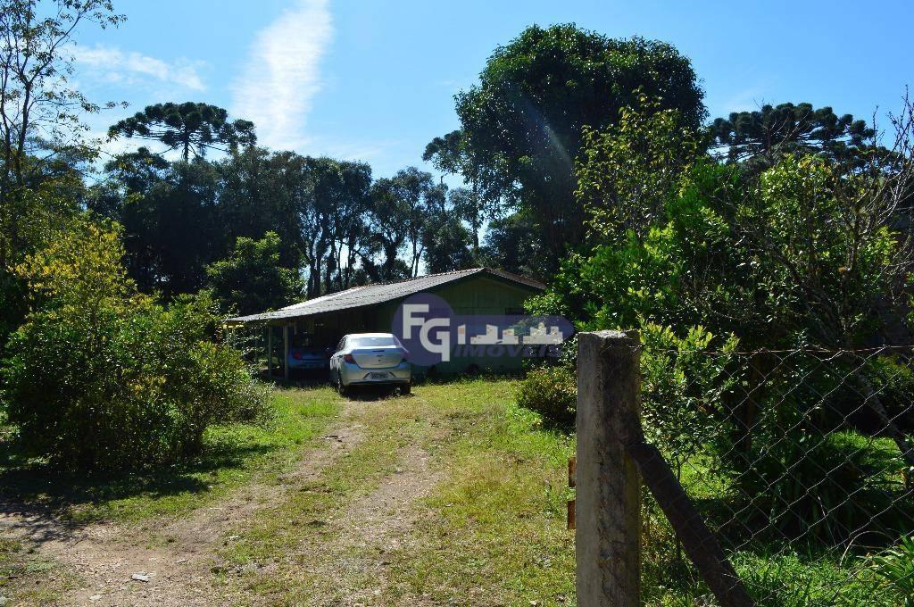 Chácara no Caminho do Vinho em São José dos Pinhais
