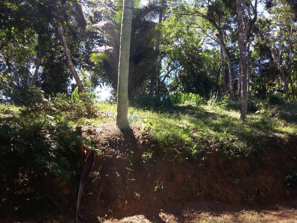 Terreno Residencial à venda em Vargem Grande, Teresópolis - Foto 2