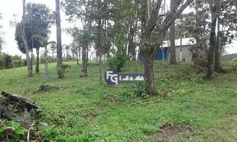Chácara com 32.670 m² por R$ 280.000 - Zona Rural - Mandirituba/PR