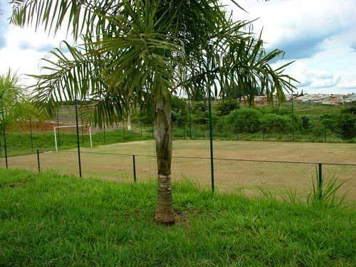 Terreno, Residencial Jacarandás, Paulinia (TE0042) - Foto 2