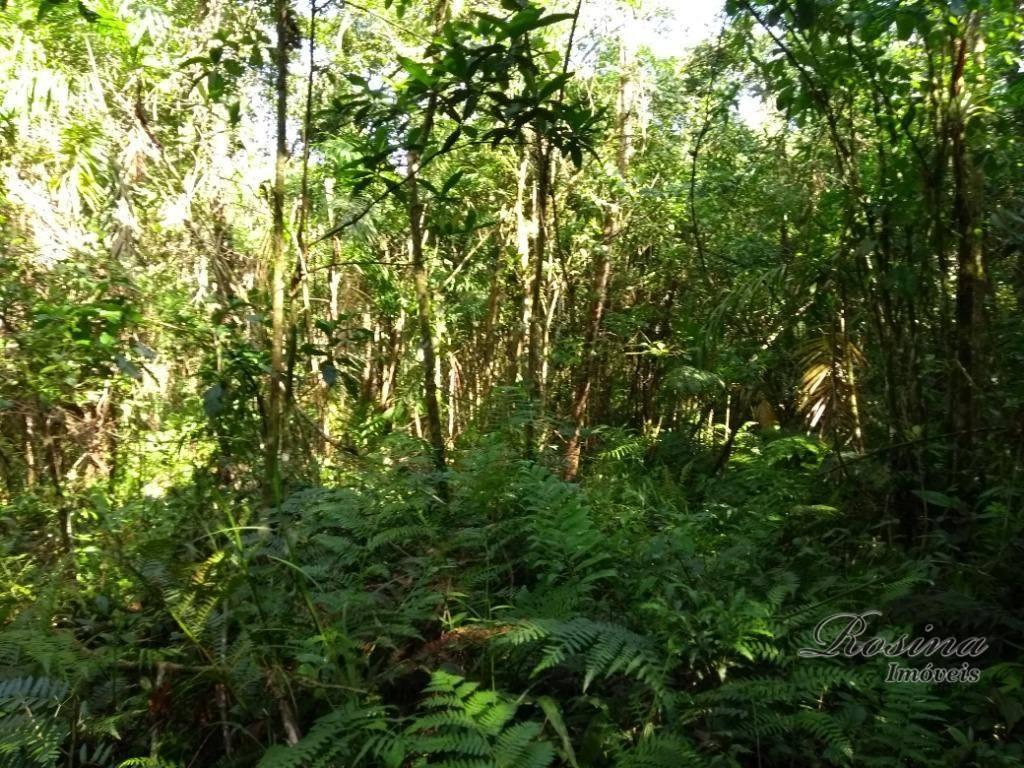 terreno medindo 5,7 alqueires localizado na colina marques-porto de cima.o terreno é totalmente plano, tem área...